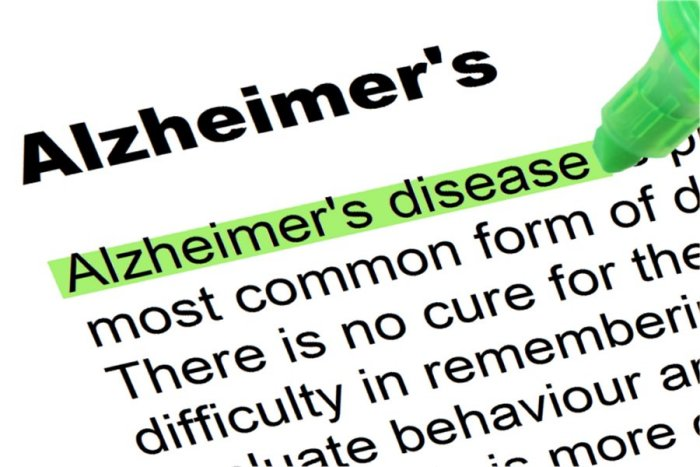 Groundbreaking Discovery in Norway about Alzheimer�s