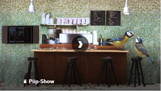 Norway S Most Unusual Corona Tv Show Features 14 Hour Live Action Of Birds Life Inside A Bird Feeder Decorated Like A Doll House The Nordic Page