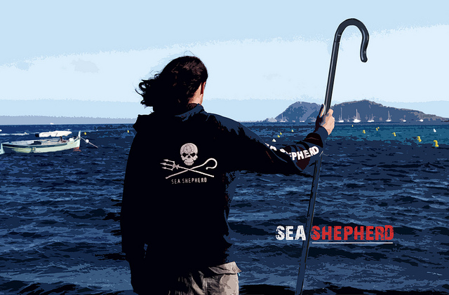 Sea Shepherd: Eco terrorists or the front line to protect social justice?